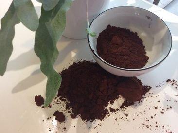 Pigment pour la réalisation d'une coloration végétale